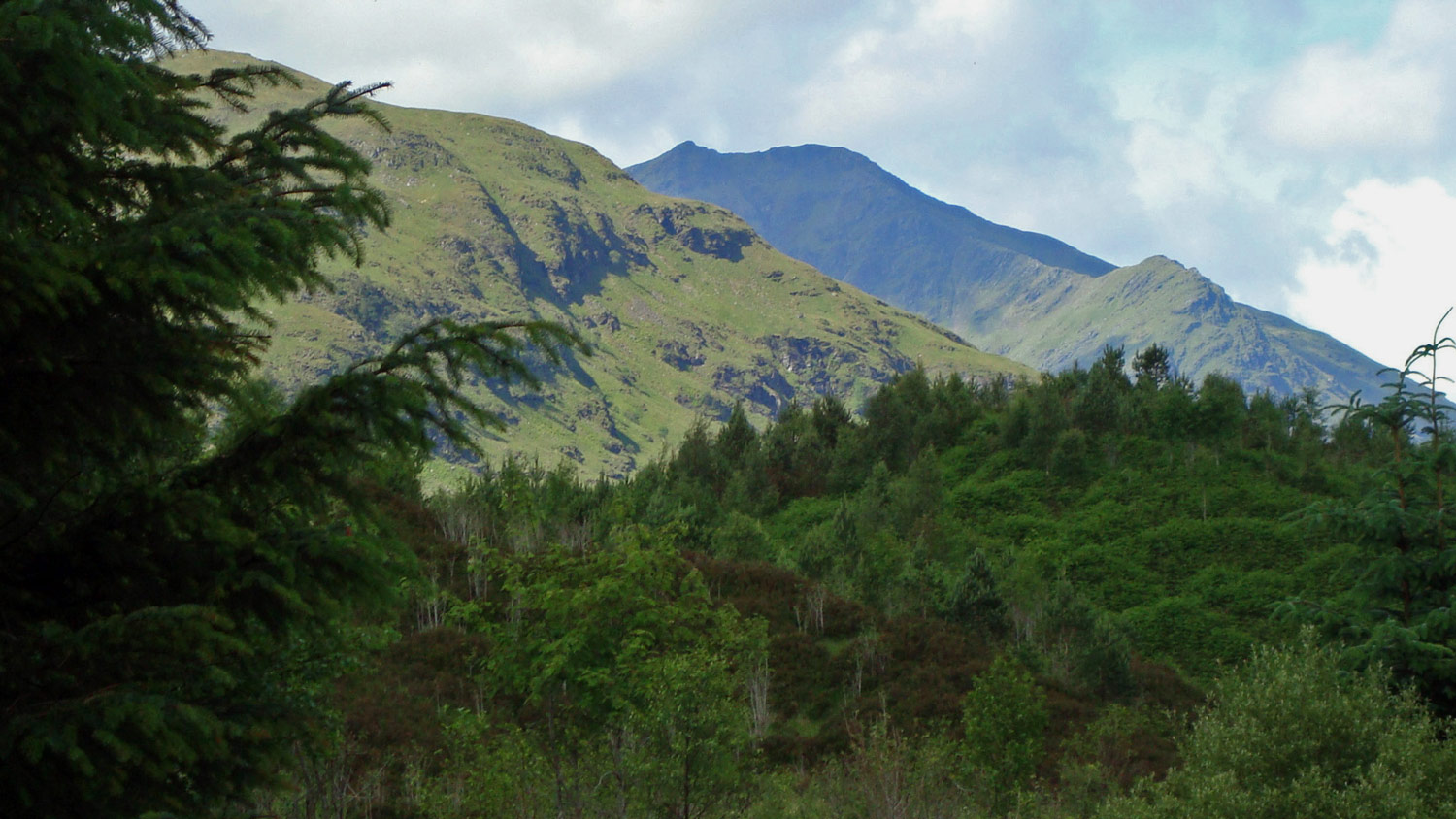 Ben Lui appears from behind the trees.