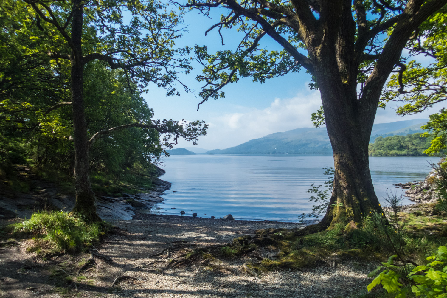 The views out to Loch Lomond from small bays in the forest like this were fantastic.